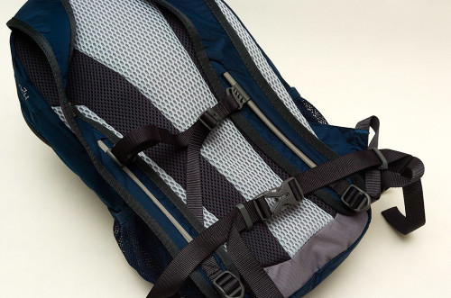 Height adjustable chest strap and a thin waist strap.